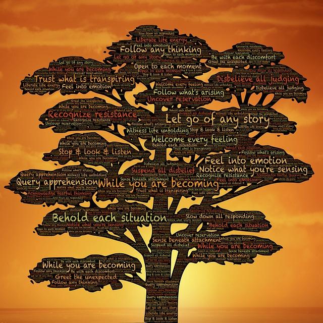 metamorfose bewustwording persoonlijke groei